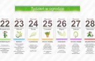 Kalendarz ogrodnika na 22.01 – 28.01 – styczeń w ogrodzie