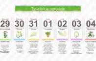 Kalendarz ogrodnika na 29.01 – 04.02 – luty w ogrodzie