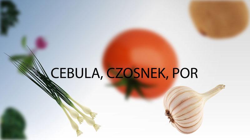 Cebula czosnek i por wysiew i uprawa