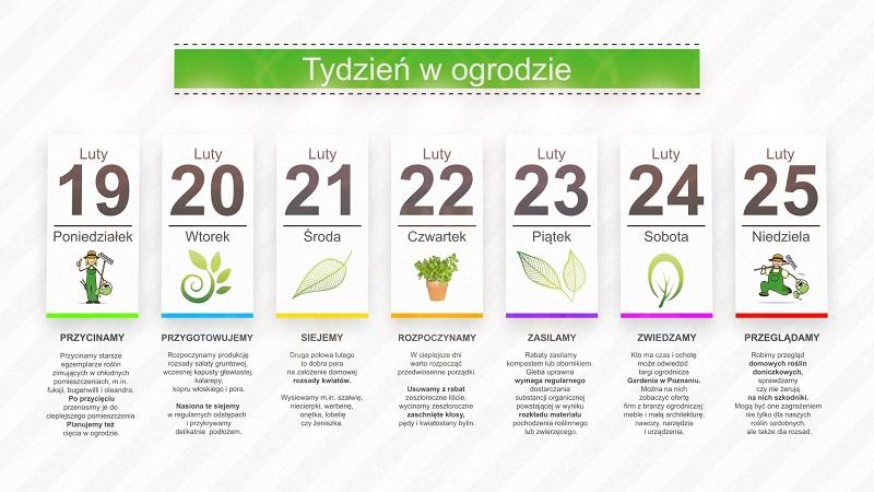 Kalendarz ogrodnika na 19.02 – 25.02 – luty w ogrodzie
