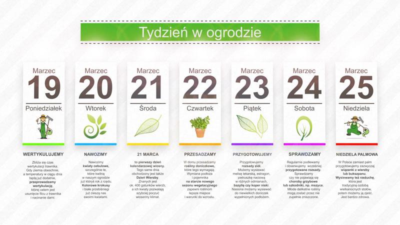 Kalendarz ogrodnika na 19.03 – 25.03 – marzec w ogrodzie