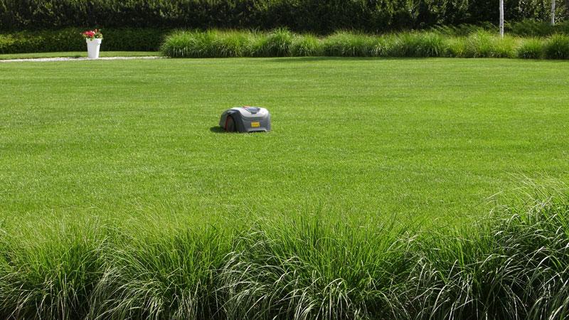 Prawidłowa pielęgnacja trawnika