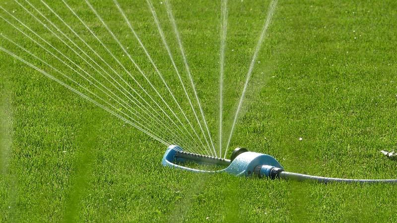 Pielęgnacja trawnika – jak dbać o trawnik latem
