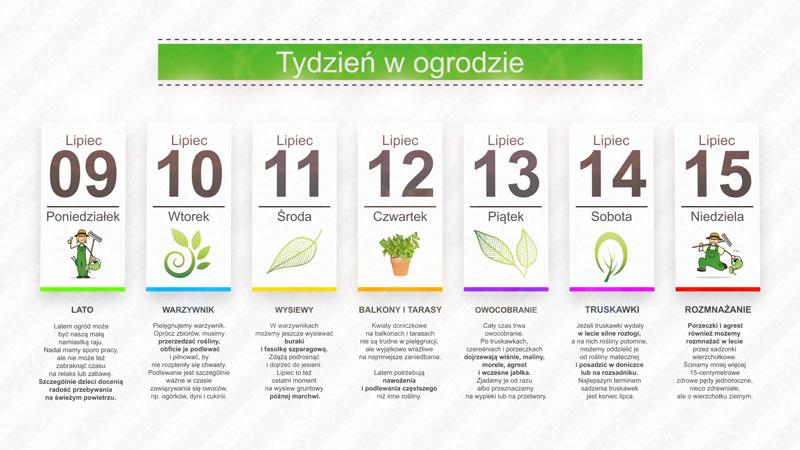 Kalendarz ogrodnika na 09.07 do 15.07 – lipiec w ogrodzie
