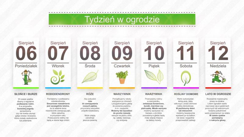 Kalendarz ogrodnika na 06.08 – 12.08 – sierpień w ogrodzie