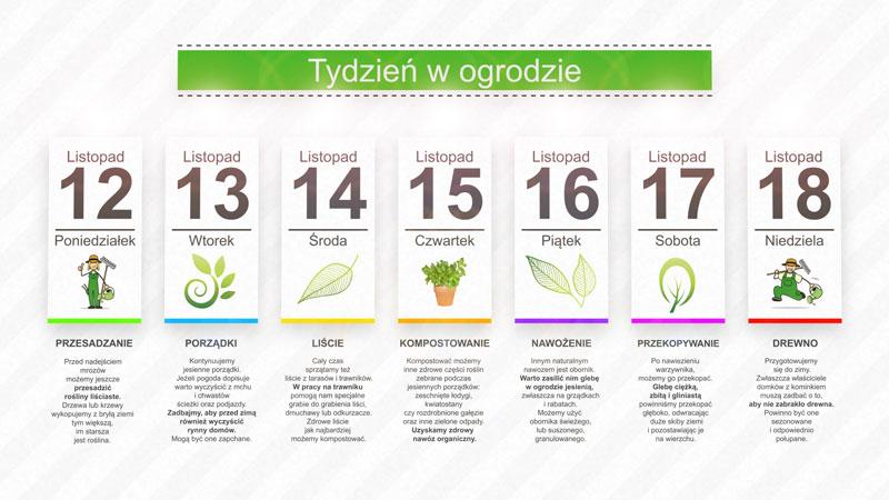 Kalendarz ogrodnika na 12.11 – 18.11 – listopad w ogrodzie