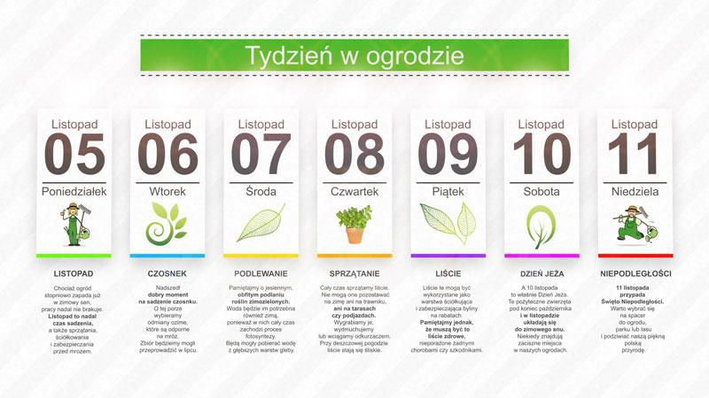Kalendarz ogrodnika na 05.11 – 11.11 – listopad w ogrodzie