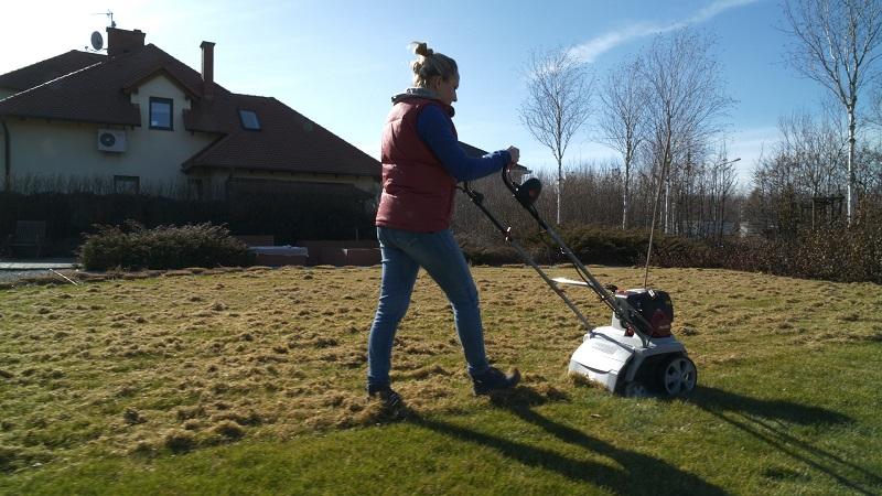 Wertykulacja trawnika i pierwsze nawożenie