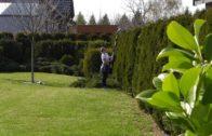 Kalendarz ogrodnika na 08.04 – 14.05 – kwiecień w ogrodzie