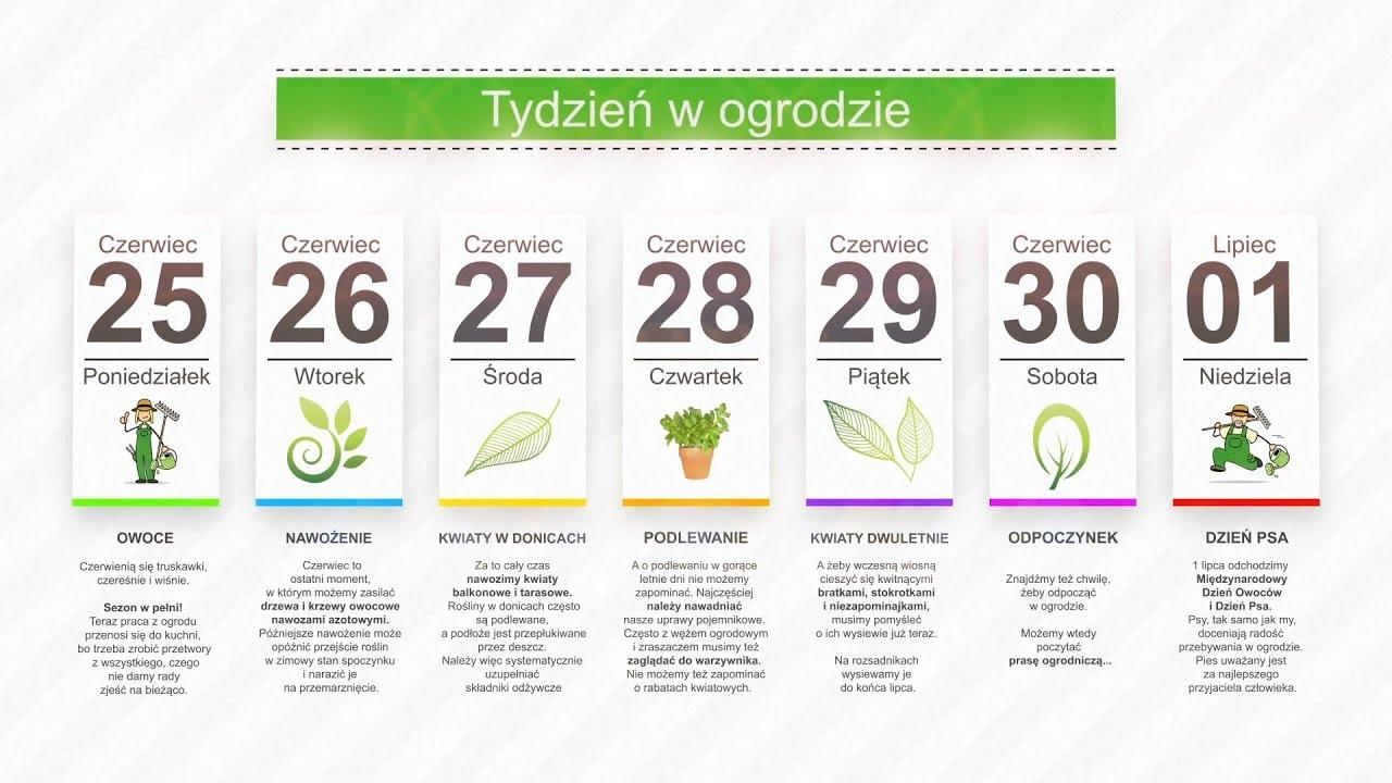 Kalendarz ogrodnika na 25.06 – 01.07 – czerwiec w ogrodzie
