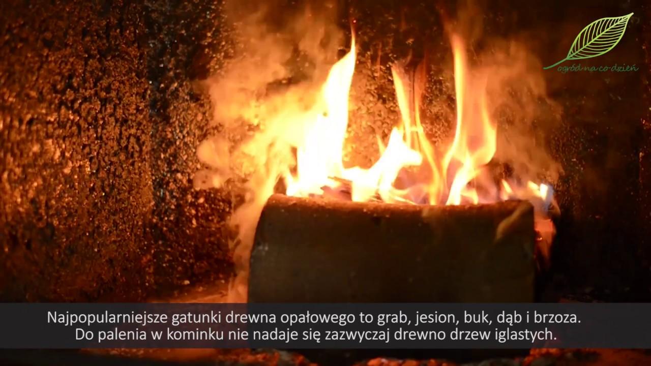 Drewno kominkowe – czym palić i jak przygotować