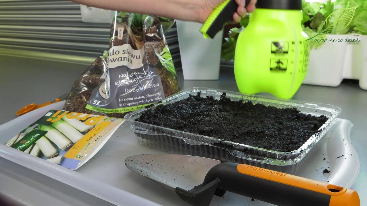 kalendarz ogrodnika, tydzień w ogrodzie, porady ogrodnicze, kalendarium ogrodnika, ogród, jak dbać o ogród, jak pielęgnować ogród, porady na temat ogrodu,