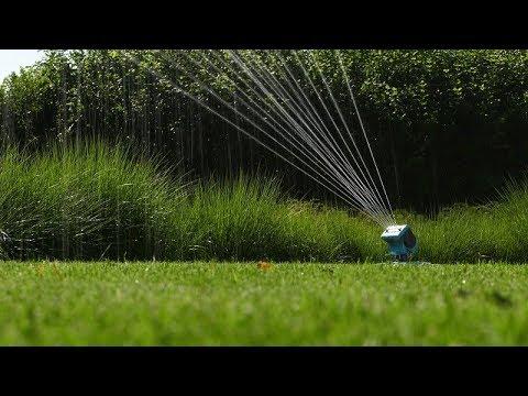 pielęgnacji trawnika, podlewanie trawnika, koszenie trawnika, odchwaszczanie trawnika,