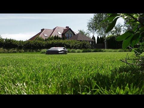 Prawidłowa pielęgnacja trawnika, nawożenie trawnika, trawnik, jak dbać o trawnik, wysokość koszenia trawnika,