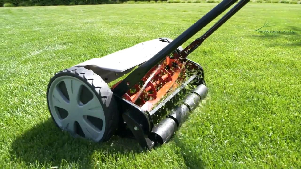Trawnik – jakie są rodzaje kosiarek?
