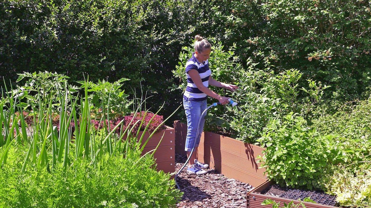 Kalendarz ogrodnika na 10.06 – 16.06. – czerwiec w ogrodzie
