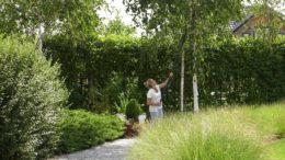 Kalendarz ogrodnika na 12.08 – 18.08 – sierpień w ogrodzie