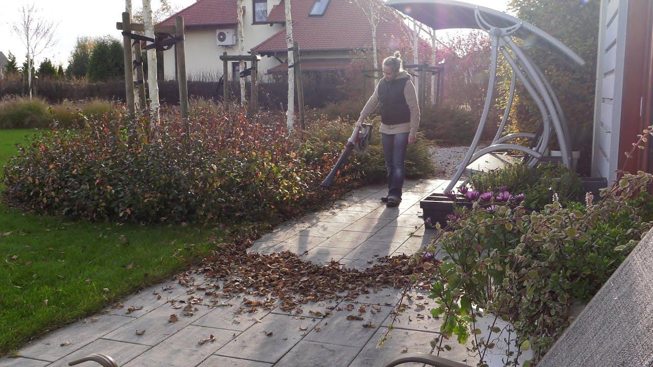 Kalendarz ogrodnika na 18.11 – 24.11 – listopad w ogrodzie