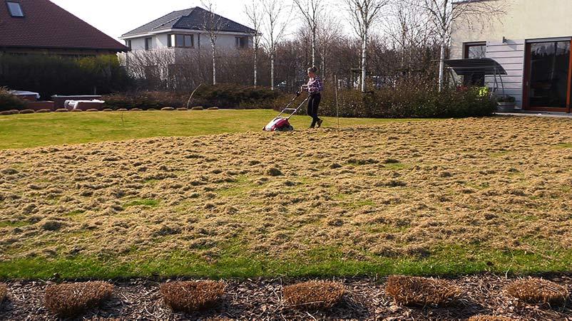 Marzec w ogrodzie – 23.03-29.03 – kalendarz ogrodnika