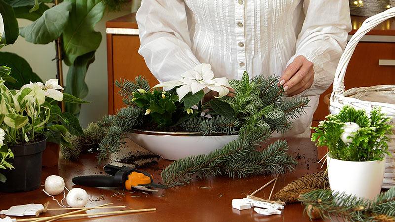 Świąteczne dekoracje – kompozycje z białych roślin