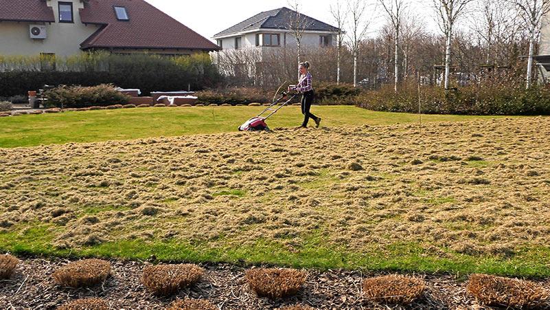 Marzec w ogrodzie – 22.03-28.03 – kalendarz ogrodnika
