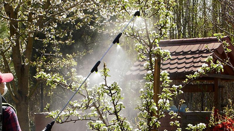 Kwiecień w ogrodzie – 26.04 – 02.05 – kalendarz ogrodnika