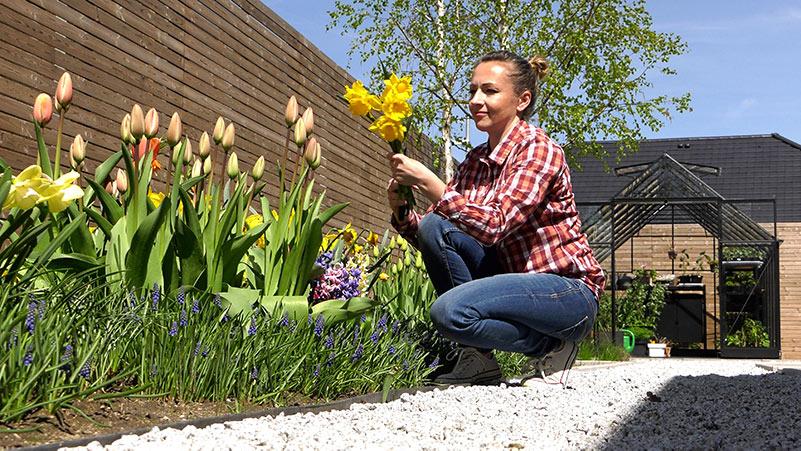 Maj w ogrodzie – 10.05 – 16.05 – kalendarz ogrodnika