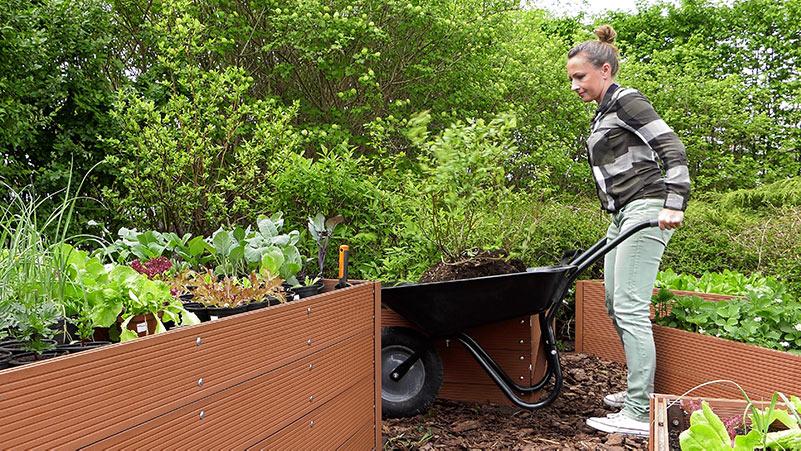 Maj w ogrodzie – 17.05 – 23.05 – kalendarz ogrodnika