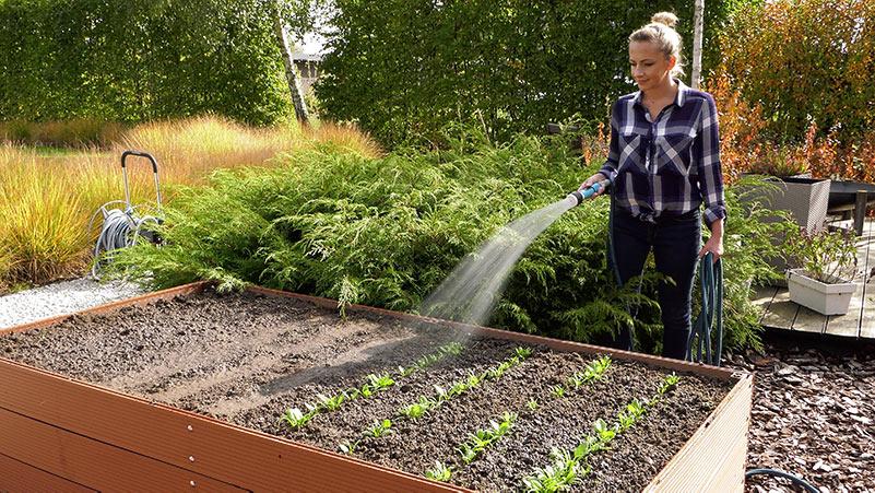 Październik w ogrodzie 27.09 – 03.10 kalendarz ogrodnika